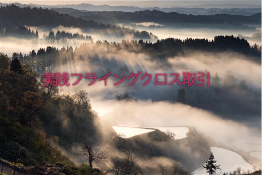 f:id:shingo-sakuragi:20180210161757j:image