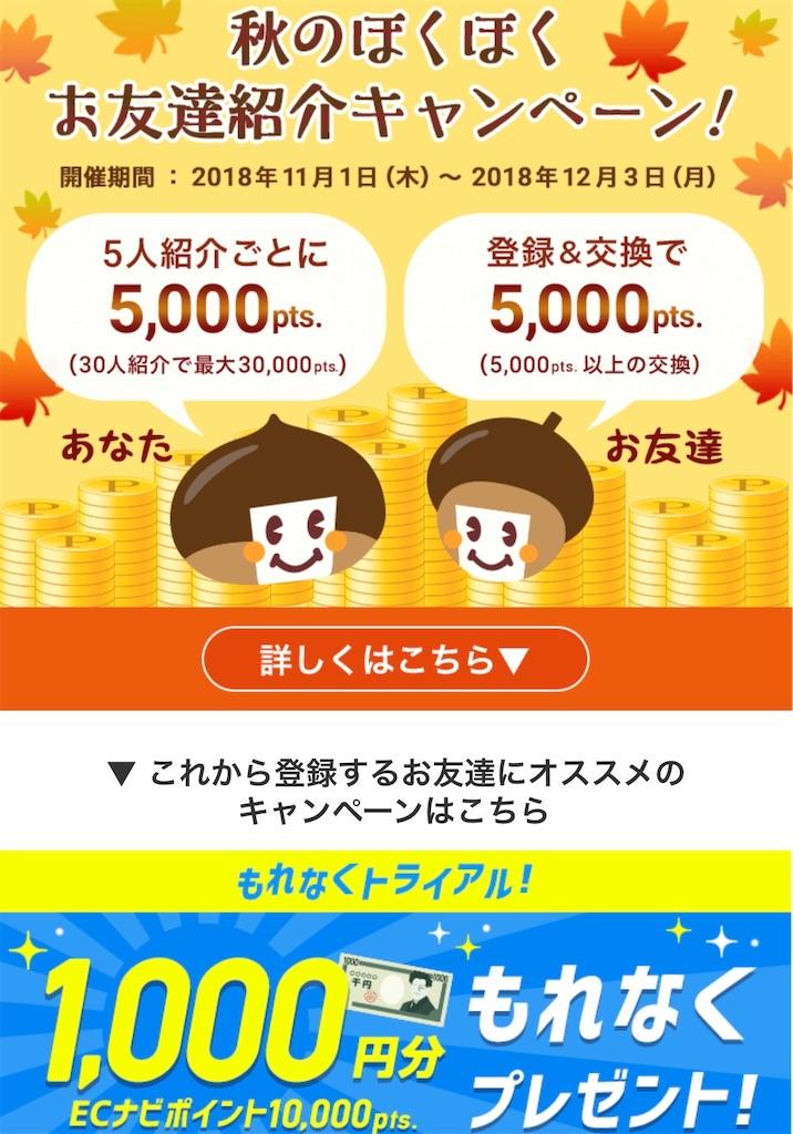 f:id:shingo-sakuragi:20181101011922j:image