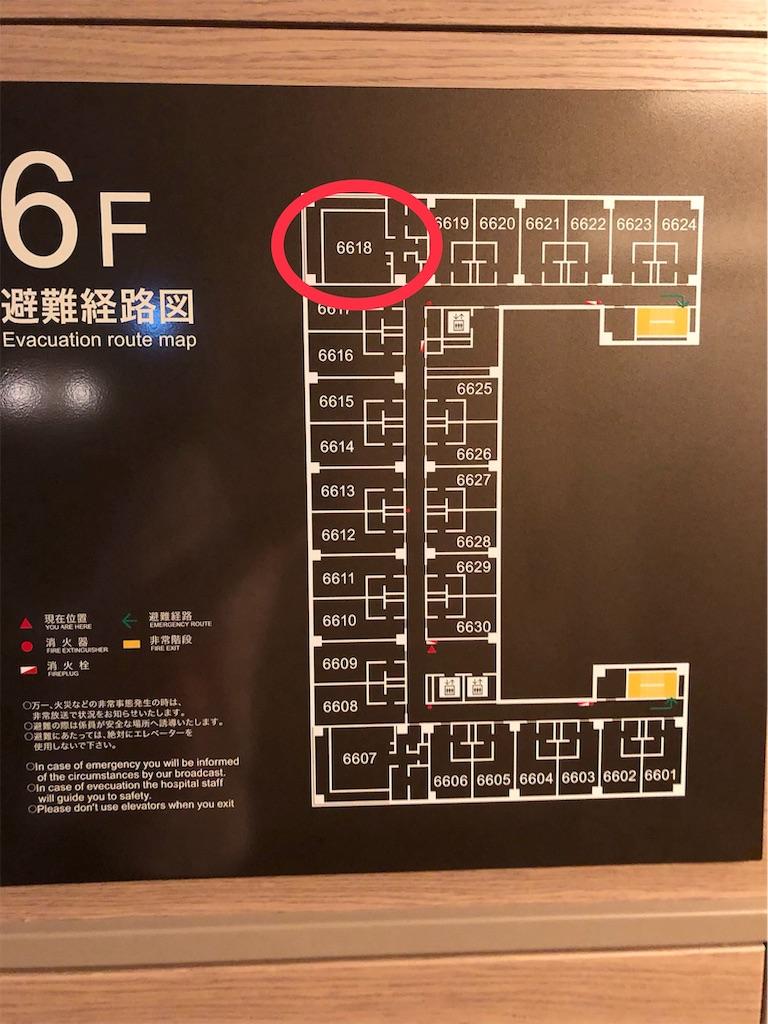 f:id:shingo-sakuragi:20181124232815j:image