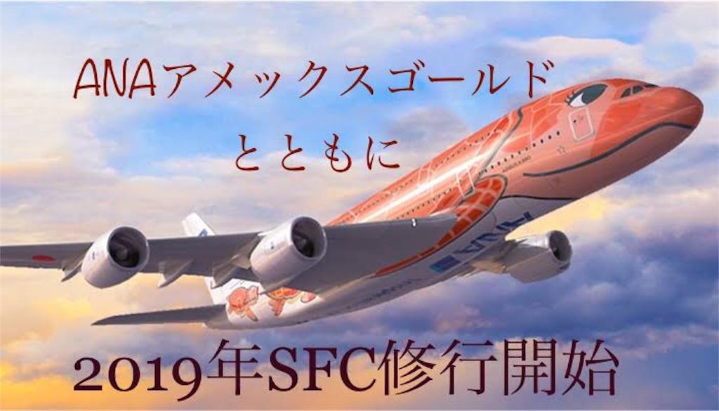 f:id:shingo-sakuragi:20190131132210j:image