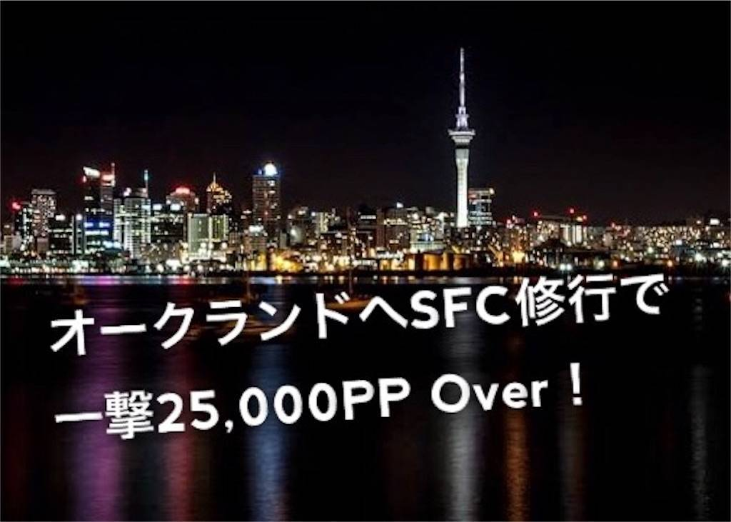 f:id:shingo-sakuragi:20190531004940j:image