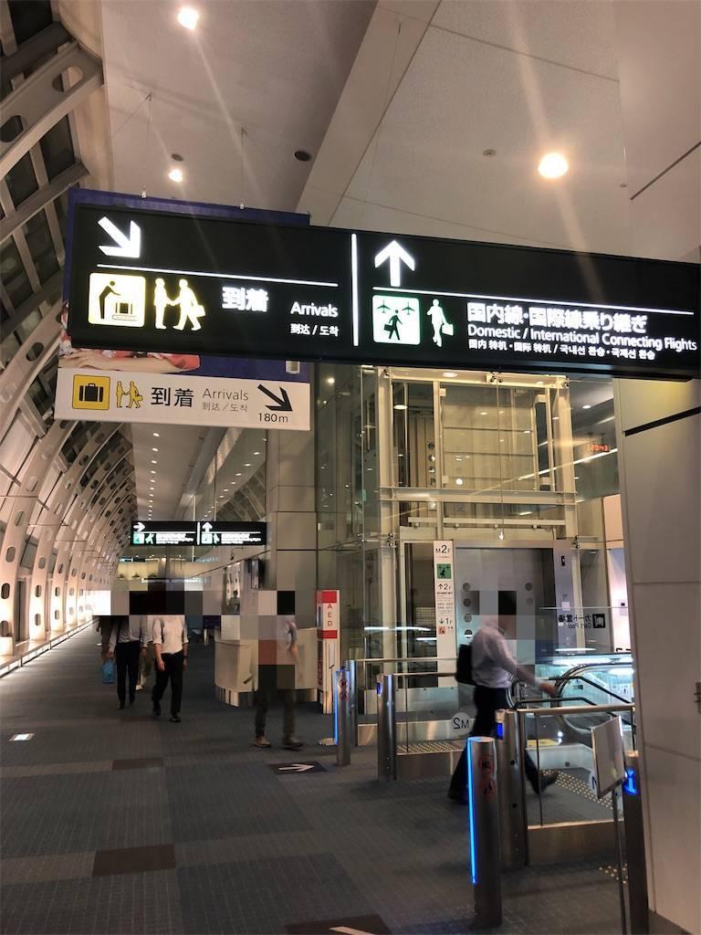 f:id:shingo-sakuragi:20190705191705j:image