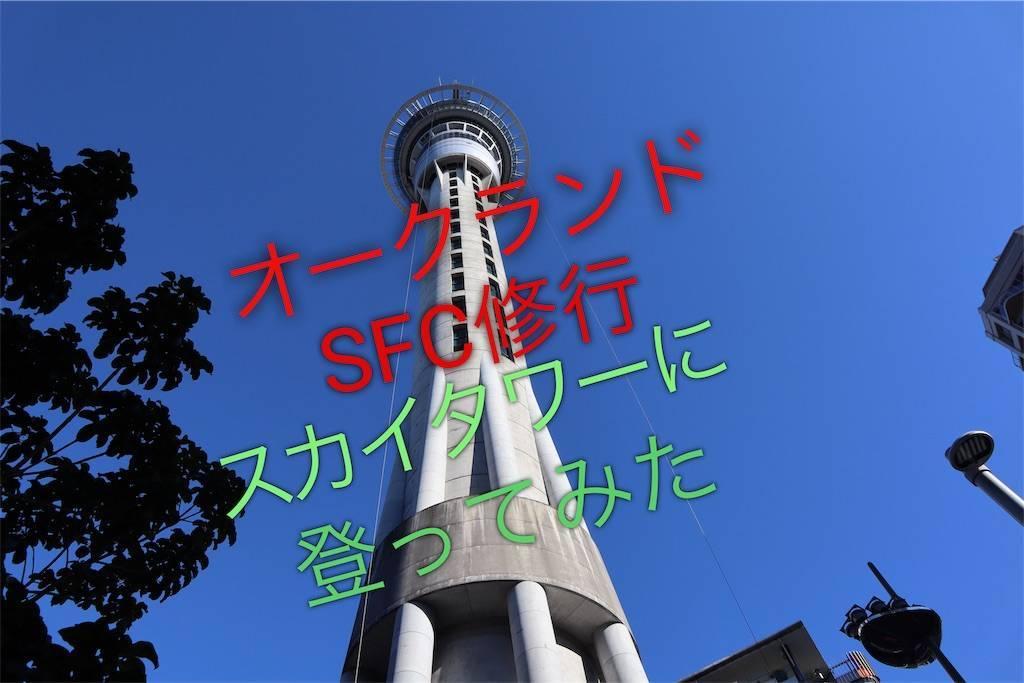 f:id:shingo-sakuragi:20190713092957j:image