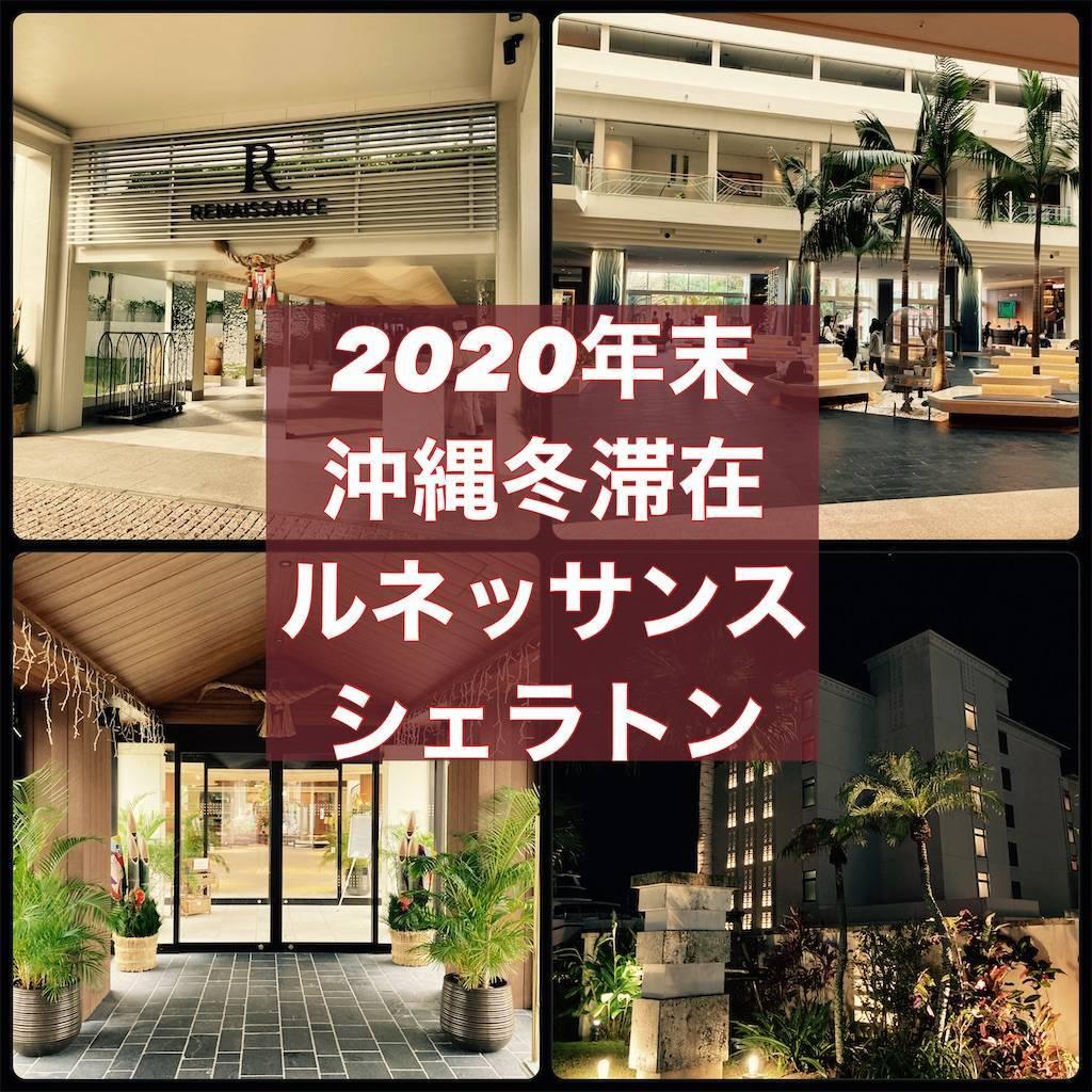 f:id:shingo-sakuragi:20210109233245j:image