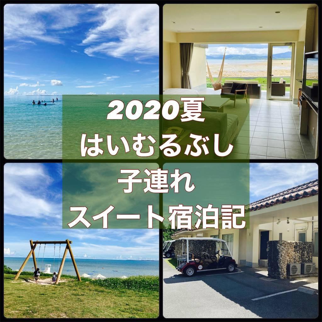 f:id:shingo-sakuragi:20210110151740j:image