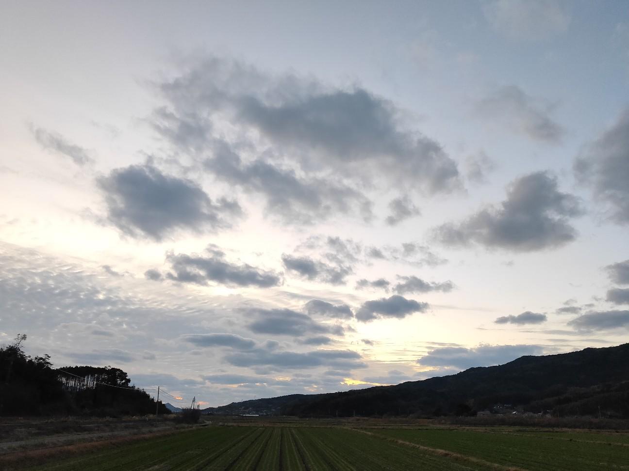 f:id:shingo_shiraishi:20200105203733j:image