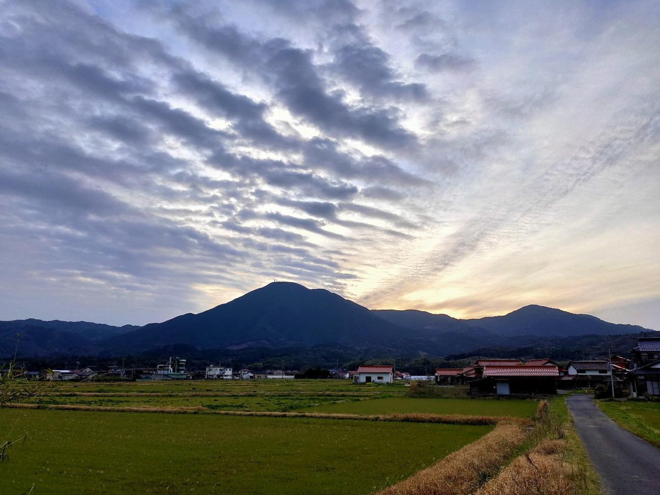 f:id:shingo_shiraishi:20200330211453j:image