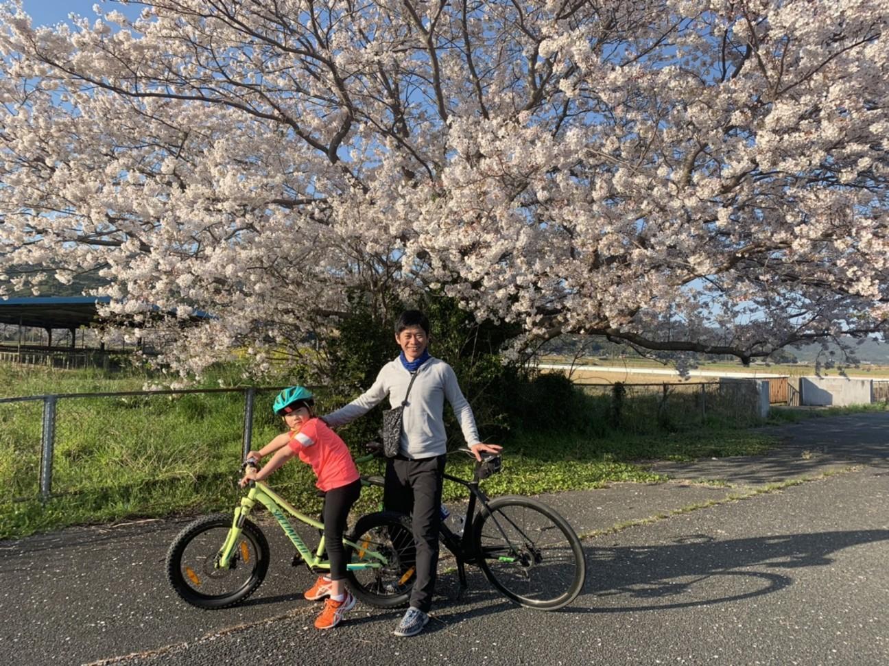 f:id:shingo_shiraishi:20200405221414j:image