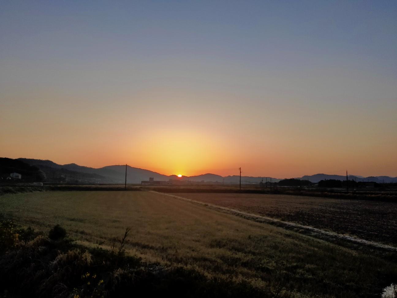 f:id:shingo_shiraishi:20200406213231j:image