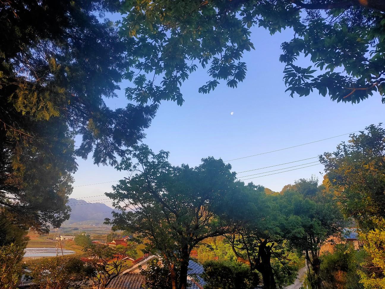 f:id:shingo_shiraishi:20200511210618j:image