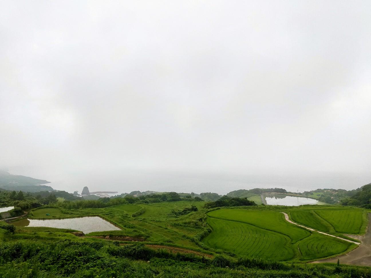 f:id:shingo_shiraishi:20200711235025j:image