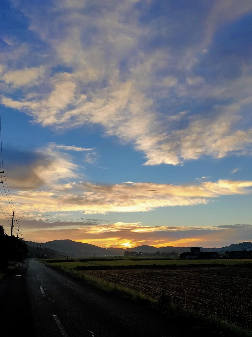 f:id:shingo_shiraishi:20200915213907j:image