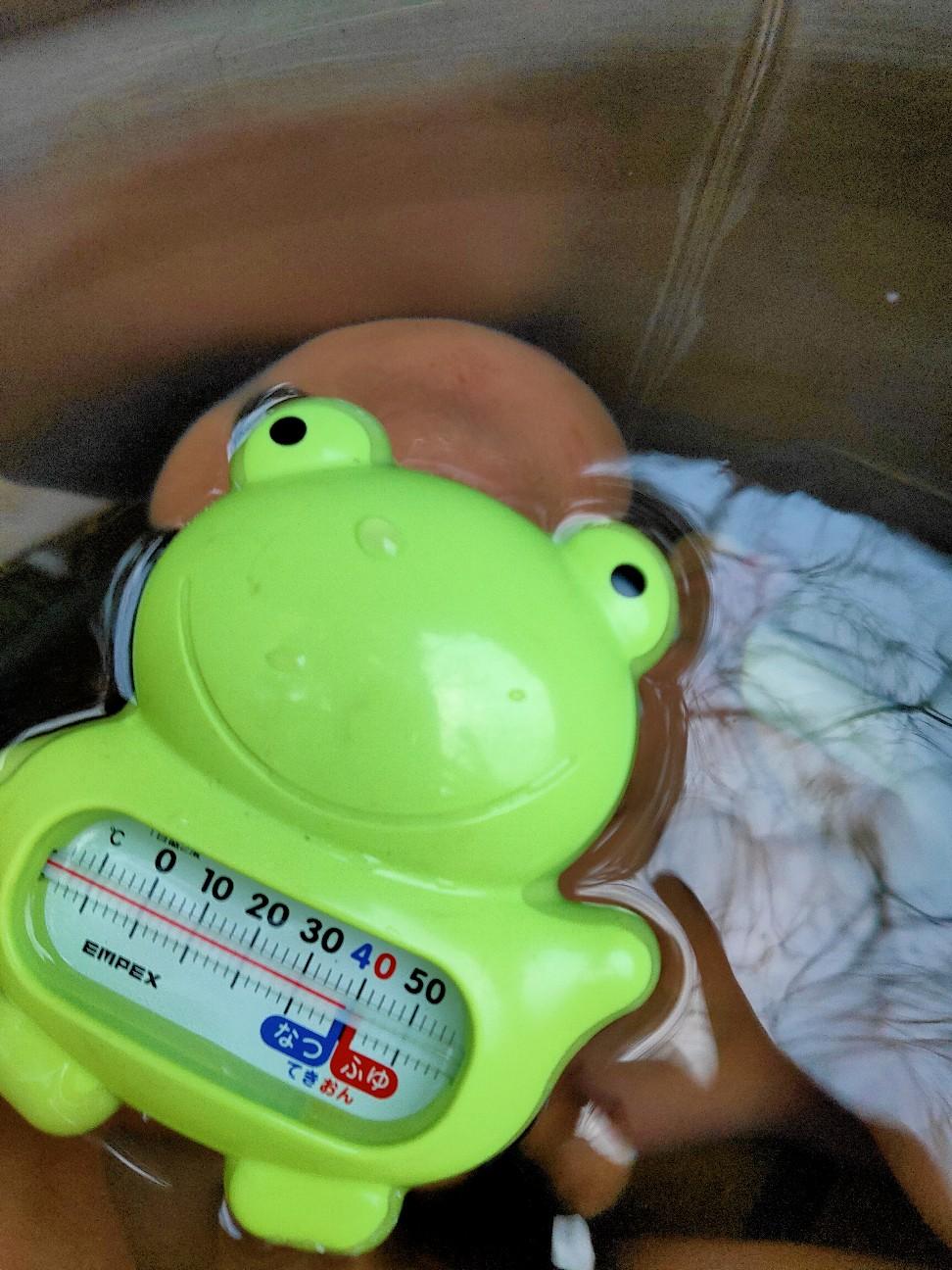 f:id:shingo_shiraishi:20210110231823j:image