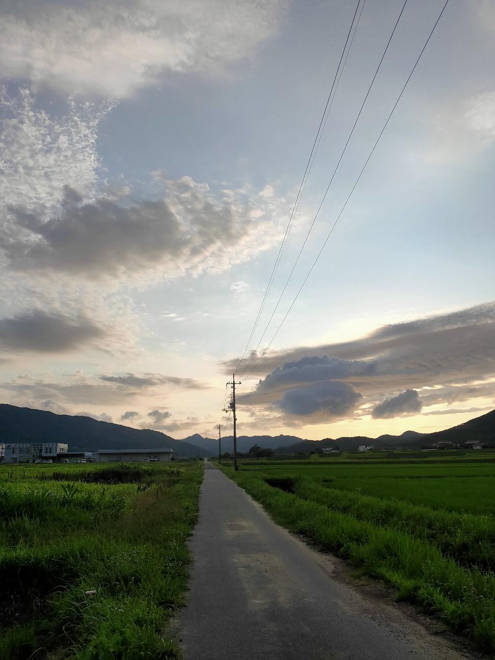 f:id:shingo_shiraishi:20210712211729j:image