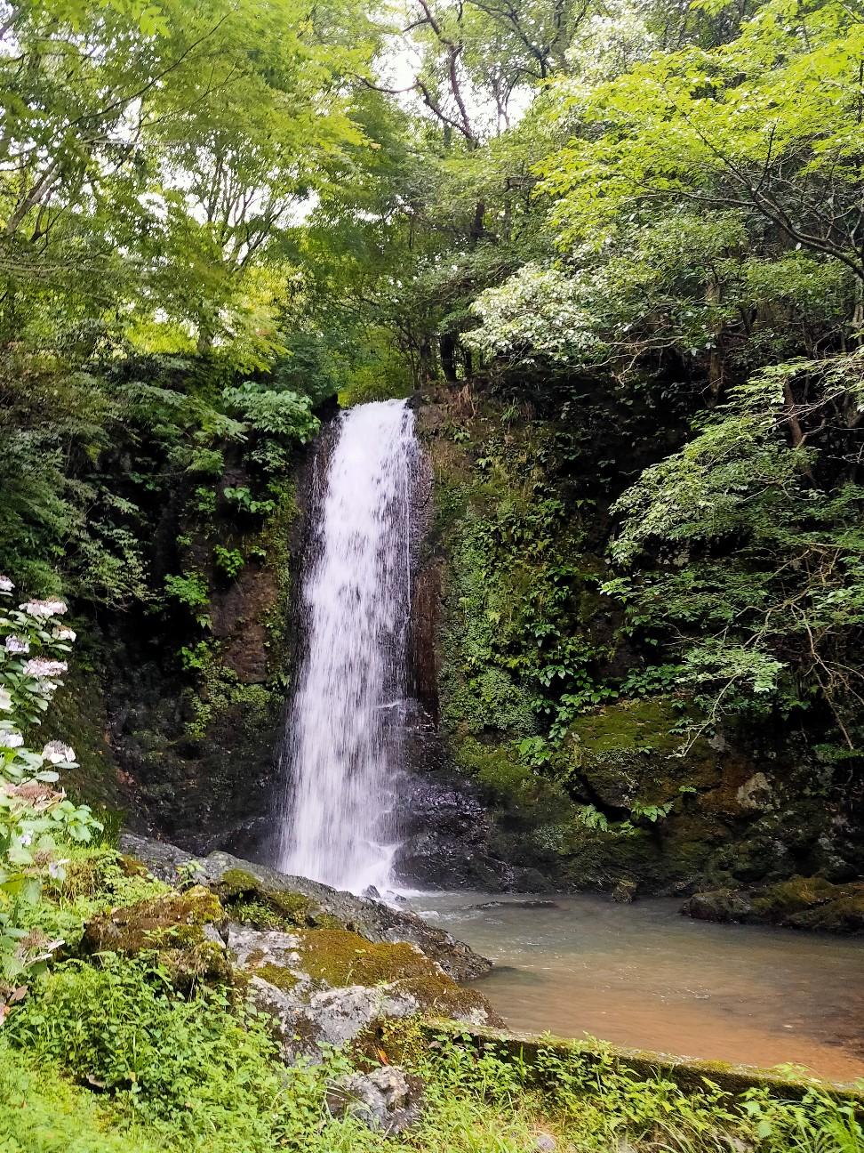 f:id:shingo_shiraishi:20210718153622j:image