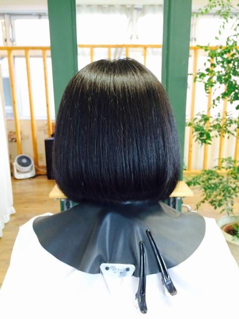 f:id:shinichi5:20150221090327j:plain