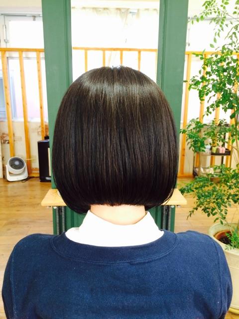 f:id:shinichi5:20150221090526j:plain