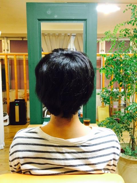 f:id:shinichi5:20150225132823j:plain