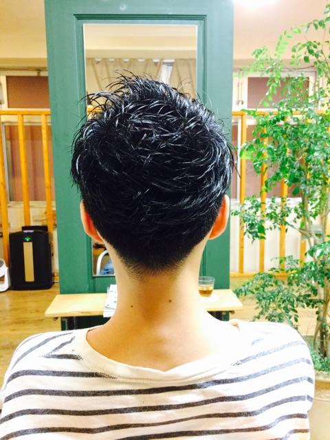 f:id:shinichi5:20150225132948j:plain