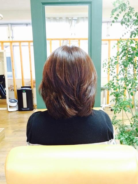 f:id:shinichi5:20150407102557j:plain