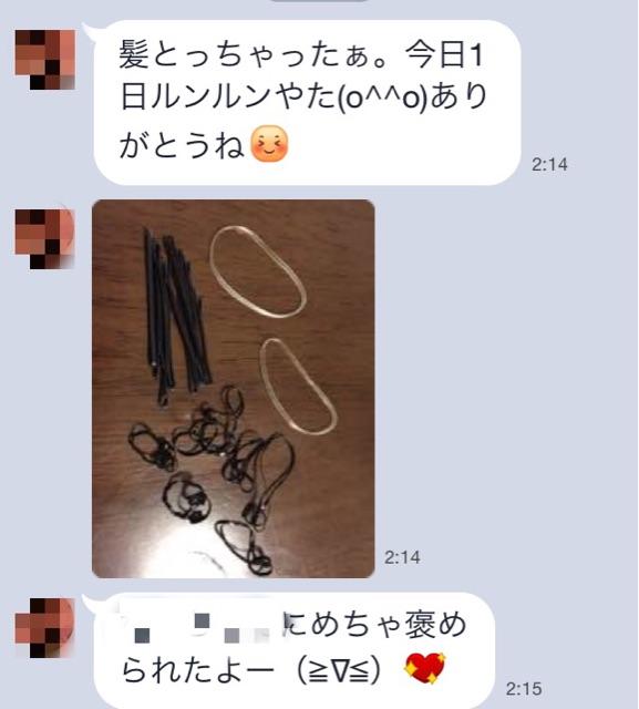 f:id:shinichi5:20150411225850j:plain