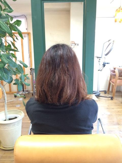 f:id:shinichi5:20150421105641j:plain