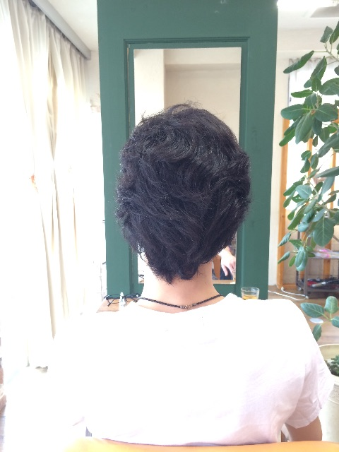 f:id:shinichi5:20150507110347j:image