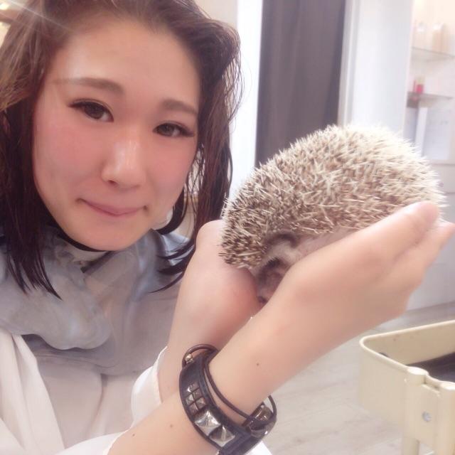 f:id:shinichi5:20150627102625j:image