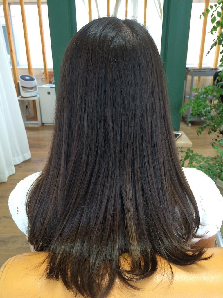 f:id:shinichi5:20150823091250j:image