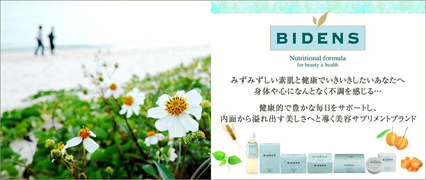 f:id:shinichikanzaki:20160607205319j:plain