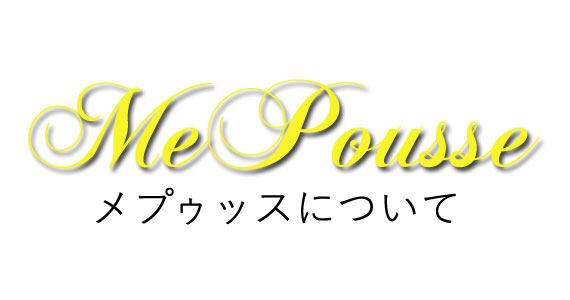 f:id:shinichikanzaki:20161209015023j:plain