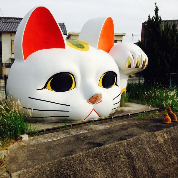 f:id:shinjikyotonakabou:20170619103353j:plain