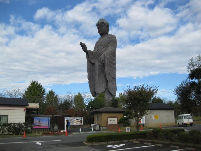 f:id:shinjikyotonakabou:20171013102134j:plain