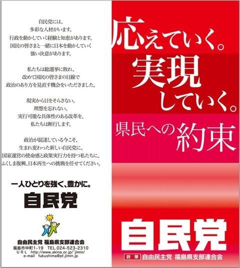f:id:shinjitunoseijika:20121227123223j:image