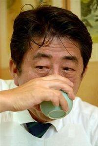 f:id:shinjitunoseijika:20141002224059j:image