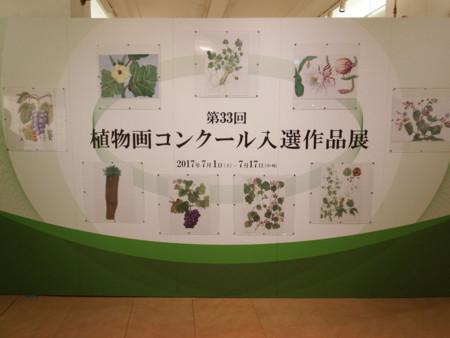 f:id:shinju-oonuki:20170715234032j:image