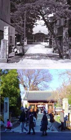 f:id:shinju-oonuki:20180103095908j:image
