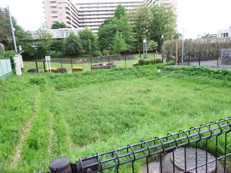 f:id:shinju-oonuki:20180601114129j:image