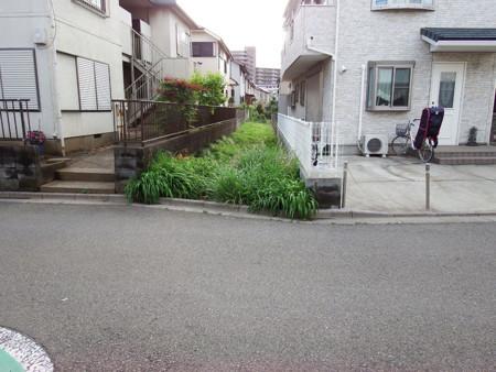 f:id:shinju-oonuki:20180601120308j:image