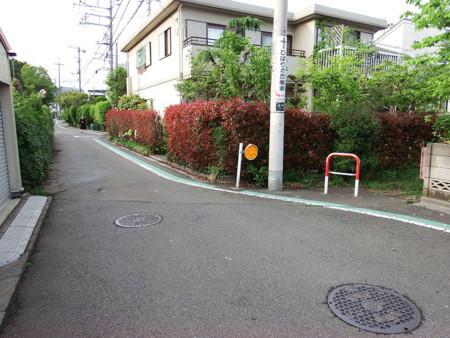 f:id:shinju-oonuki:20180601120537j:image