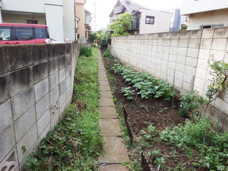 f:id:shinju-oonuki:20180601120946j:image