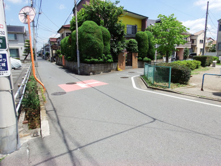 f:id:shinju-oonuki:20180601121803j:image