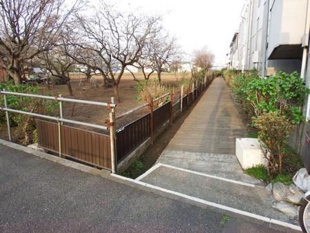 f:id:shinju-oonuki:20180618220033j:image