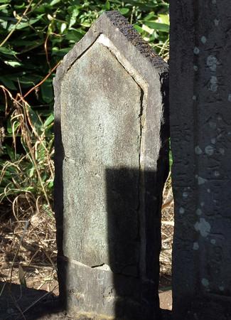 f:id:shinju-oonuki:20180911224515j:image