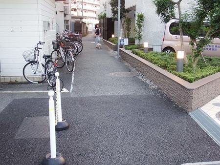 f:id:shinju-oonuki:20180928163106j:image