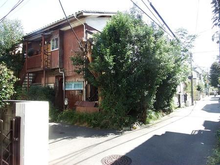 f:id:shinju-oonuki:20181013190353j:image