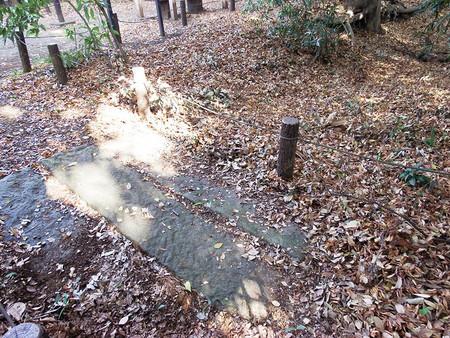 f:id:shinju-oonuki:20181210195530j:image