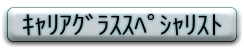 f:id:shinjyojimichiru:20170217212516p:plain