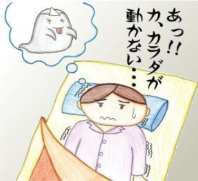 f:id:shinjyojimichiru:20170615033202j:plain