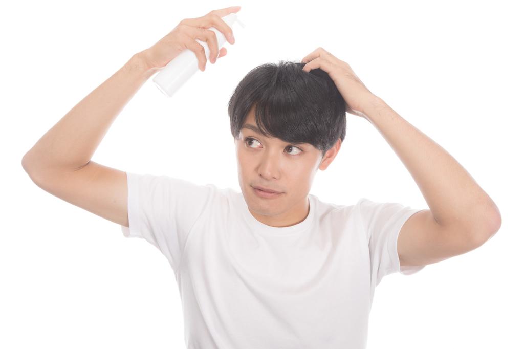 f:id:shinjyojimichiru:20181227232014j:plain